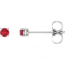 14kt White 2.5mm Round Ruby Earrings
