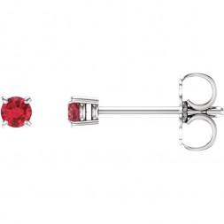 14kt White 2.5mm Round Ruby Earrings