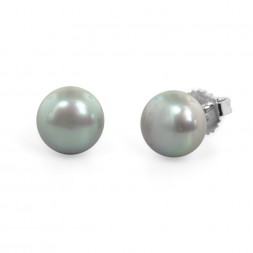 Freshwater Cultured Pearl Stud Earring Sterling Silver 9-9.5mm Gray Button