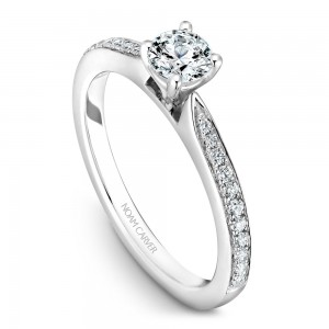 A solitaire Carver Studio white gold engagement ring with a round center stone and 23 diamonds.